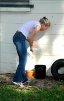 Rachel sampling for mosquitoes from containers in the backyard