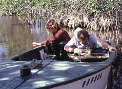 Sampling with a boat in the Indian River Lagoon