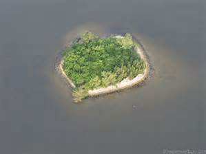 small island in the indian river lagoon with low bushes